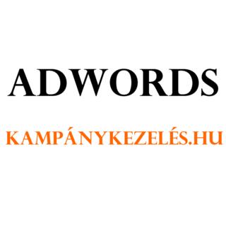 AdwordsKampanykezelesHu – Jutalékos Google Ads kezelés Webáruházak részére