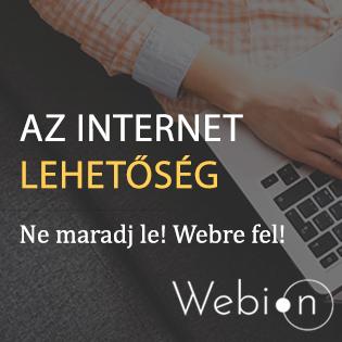 – A webáruház menedzser – Webion.hu